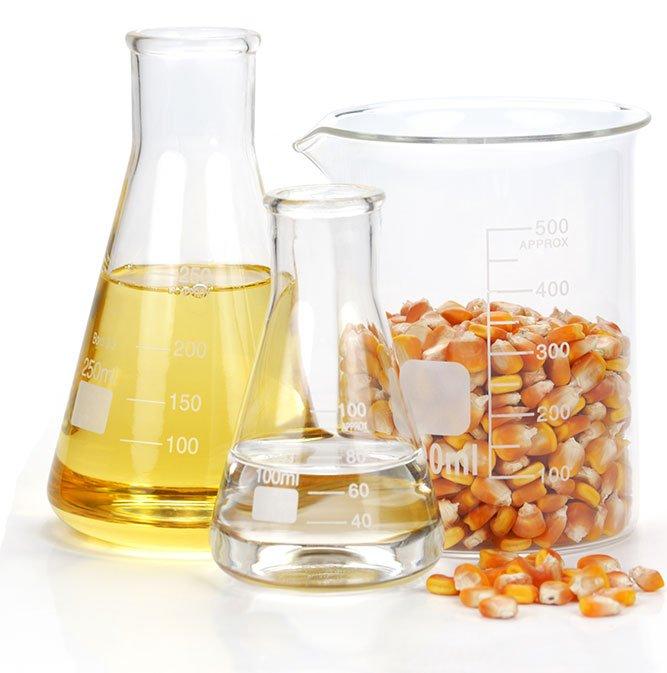 beaker with corn kernels